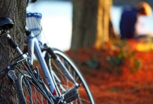 olathe bicycling club
